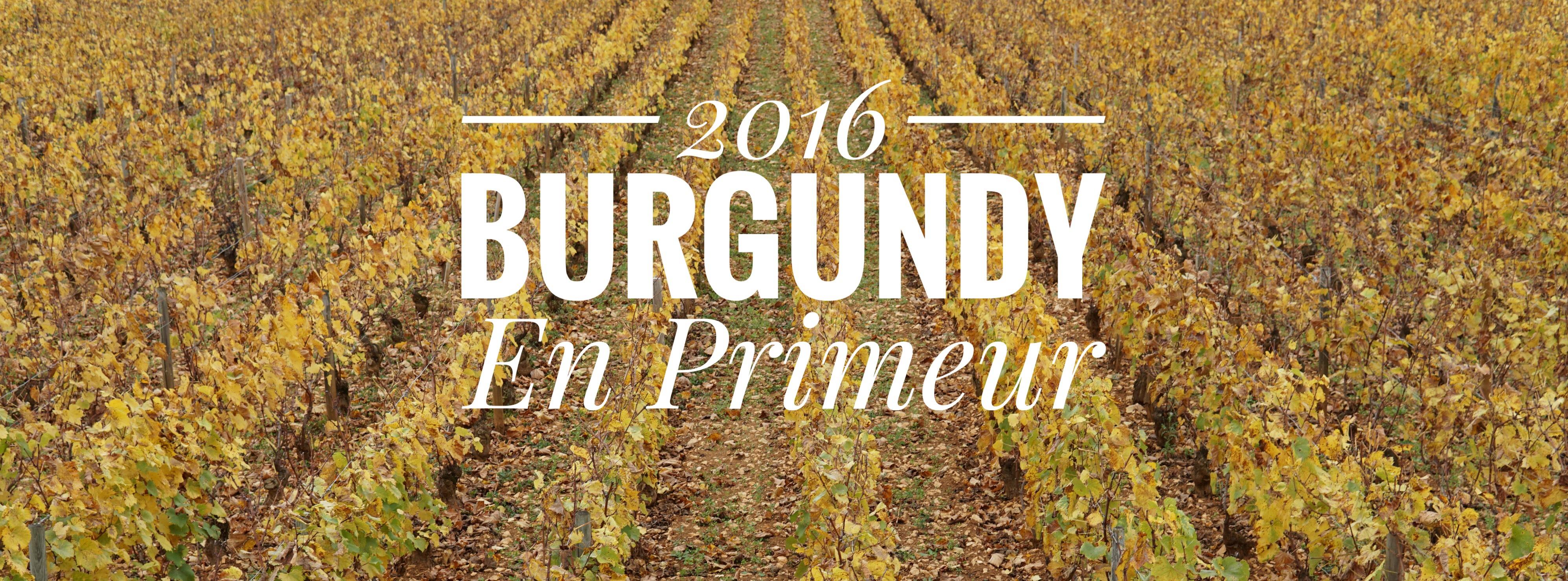 burgundy en premieur